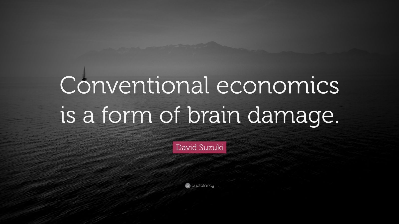 "David Suzuki Quote: ""Conventional economics is a form of brain damage."""