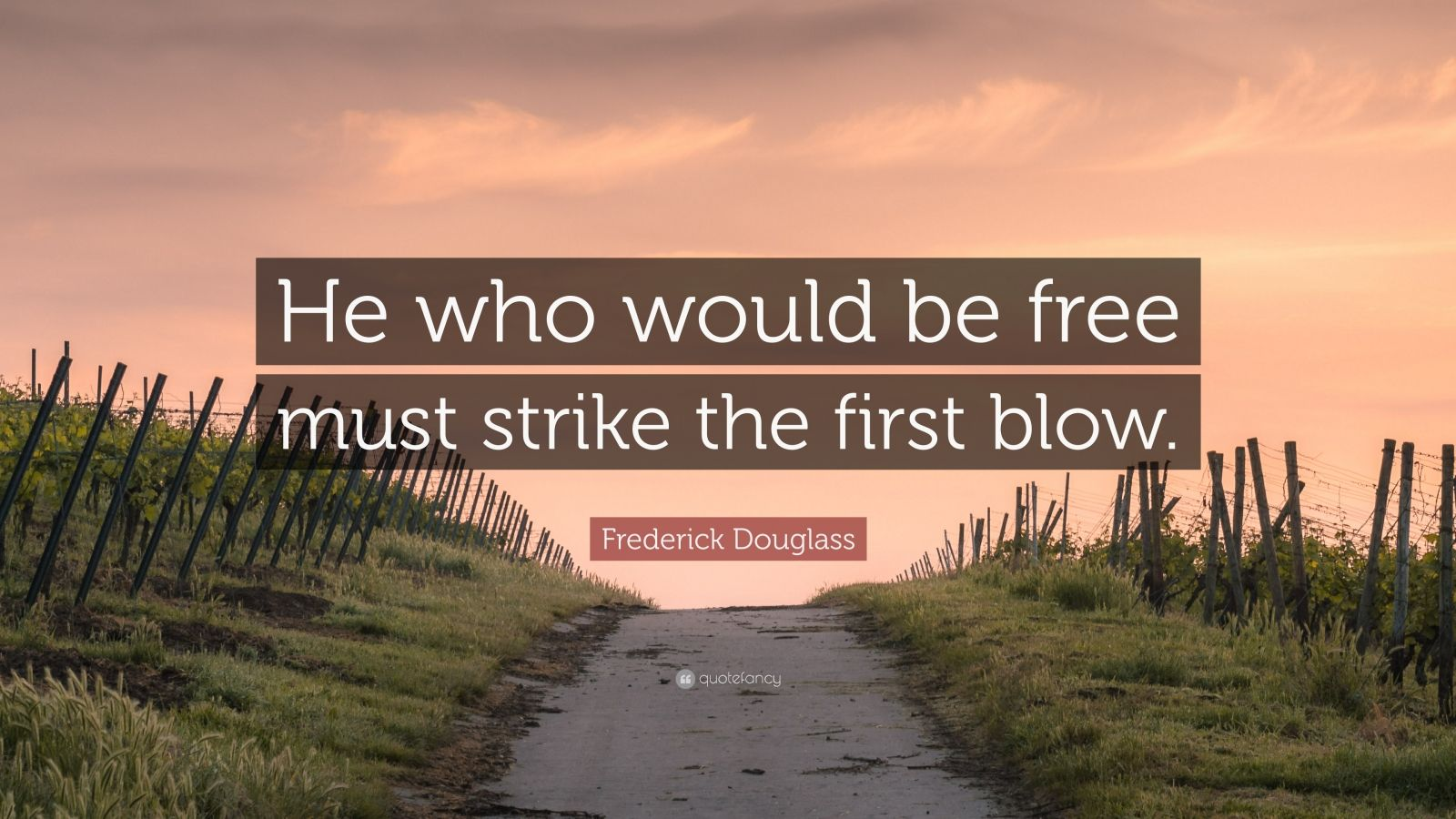 """Frederick Douglass Quote: """"He who would be free must strike the first blow."""""""
