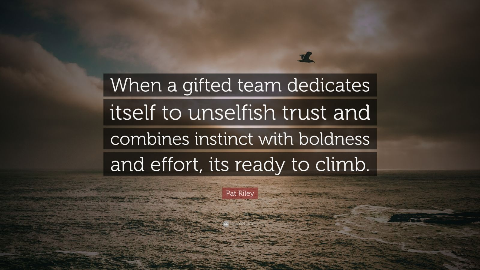 """Pat Riley Quote: """"When a gifted team dedicates itself to unselfish trust and combines instinct with boldness and effort, its ready to climb."""""""