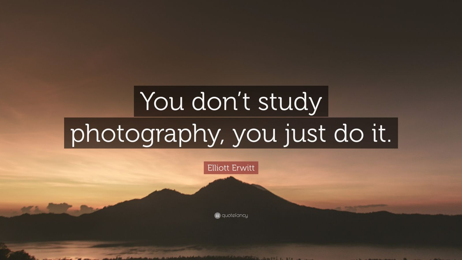 """Elliott Erwitt Quote: """"You don't study photography, you just do it."""""""
