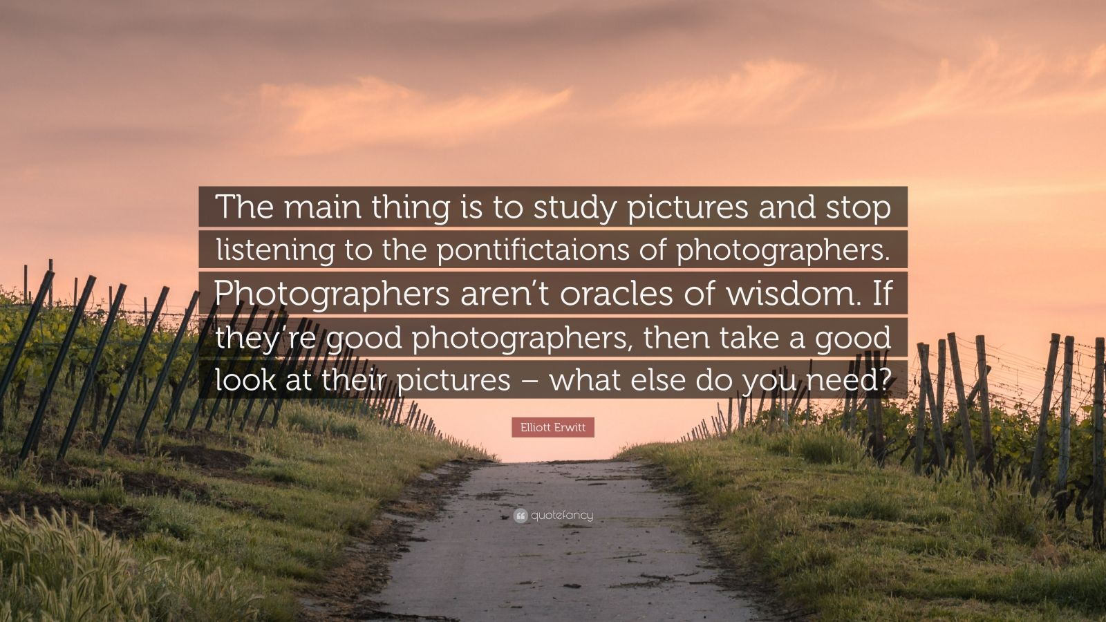 """Elliott Erwitt Quote: """"The main thing is to study pictures and stop listening to the pontifictaions of photographers. Photographers aren't oracles of wisdom. If they're good photographers, then take a good look at their pictures – what else do you need?"""""""
