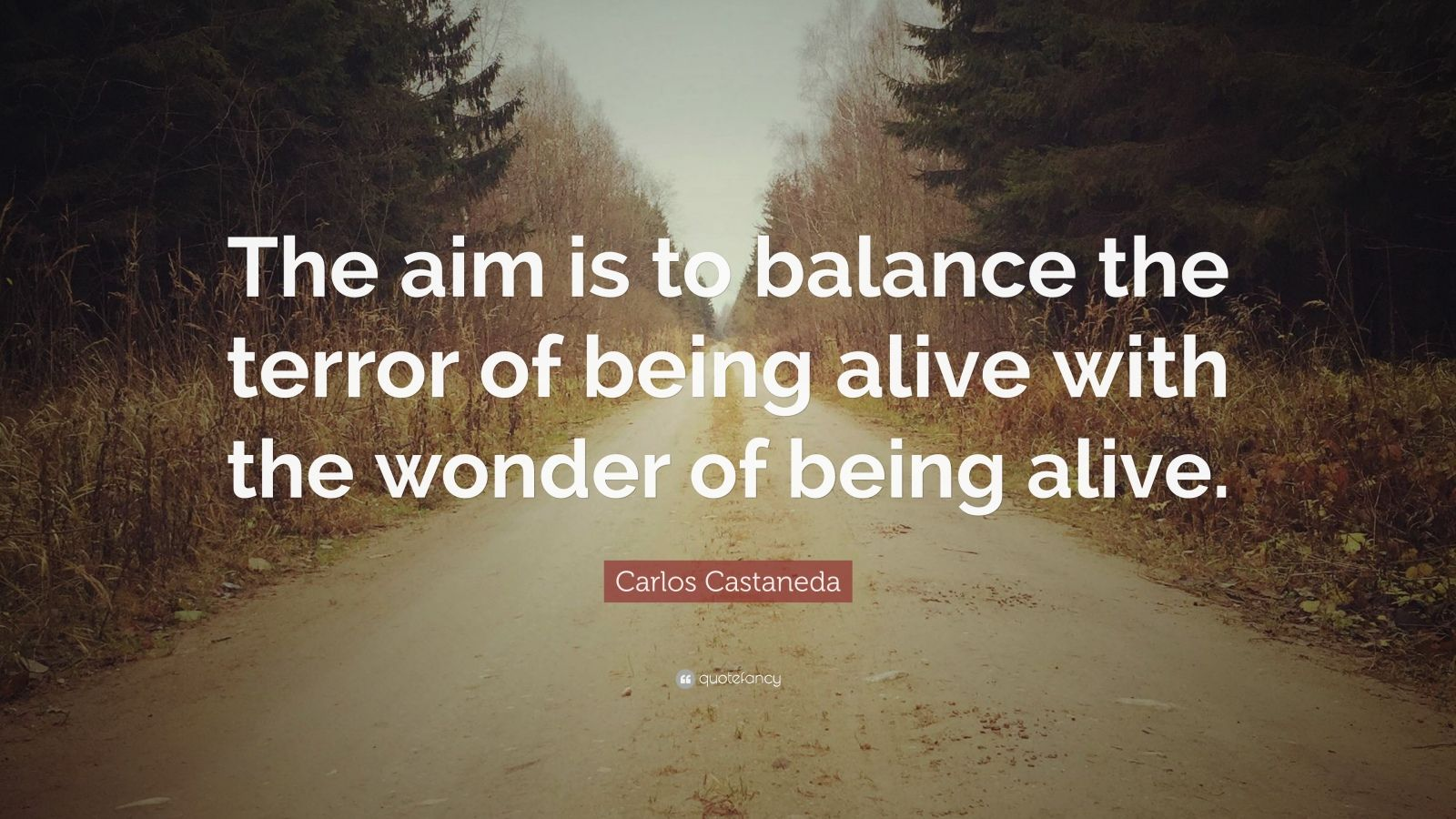 """Carlos Castaneda Quote: """"The aim is to balance the terror of being alive with the wonder of being alive."""""""