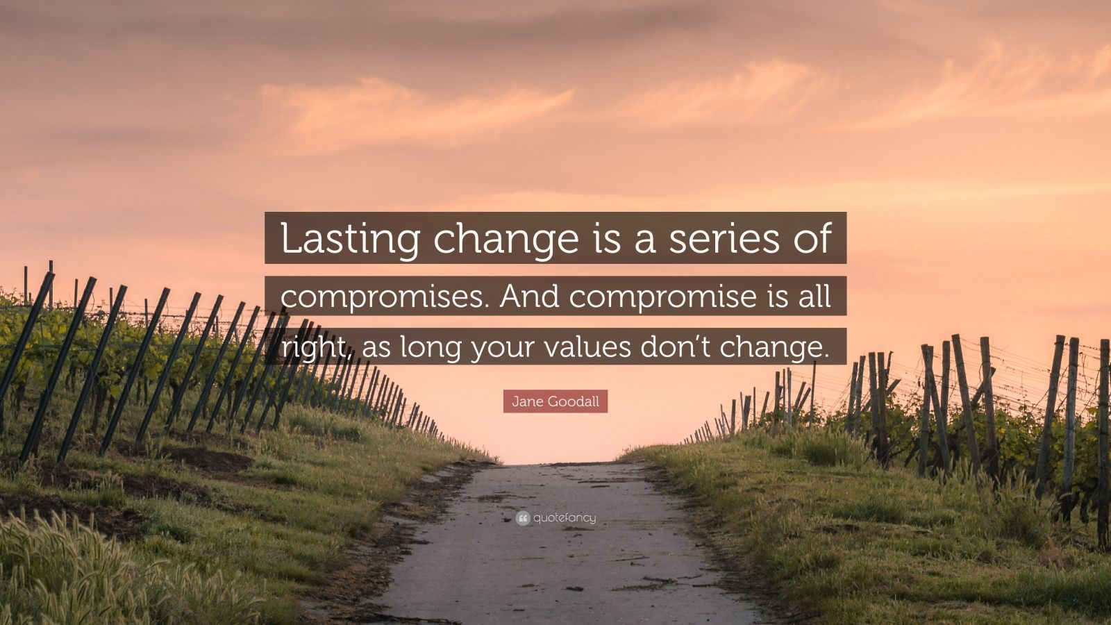 "Jane Goodall Quote: ""Lasting change is a series of compromises. And compromise is all right, as long your values don't change."""