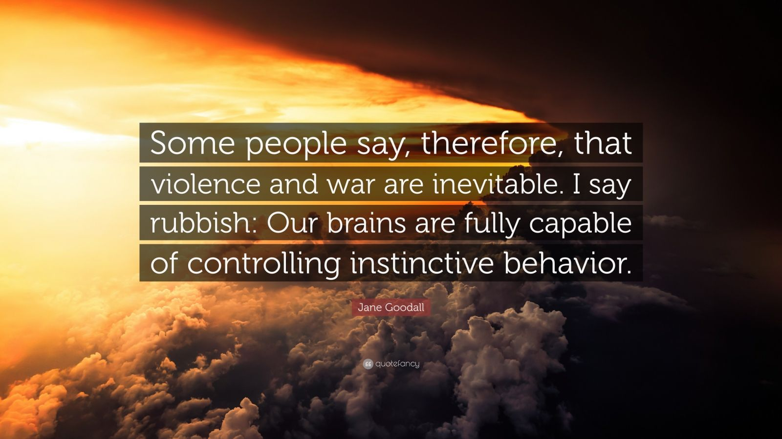 """Jane Goodall Quote: """"Some people say, therefore, that violence and war are inevitable. I say rubbish: Our brains are fully capable of controlling instinctive behavior."""""""