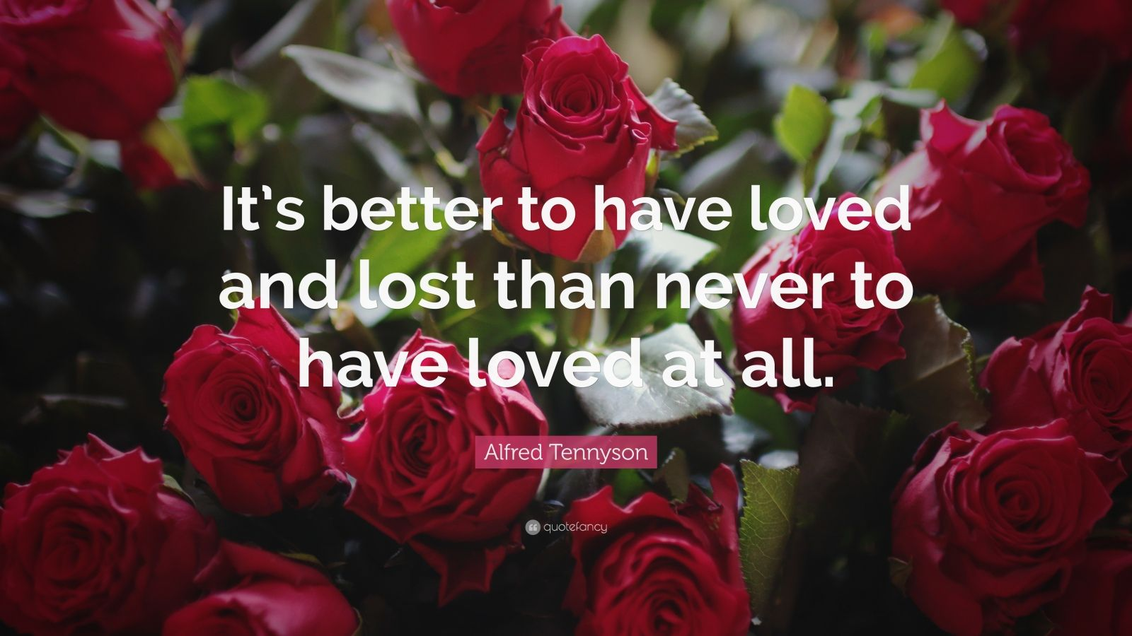 "Alfred Tennyson Quote: ""It's Better To Have Loved And Lost"