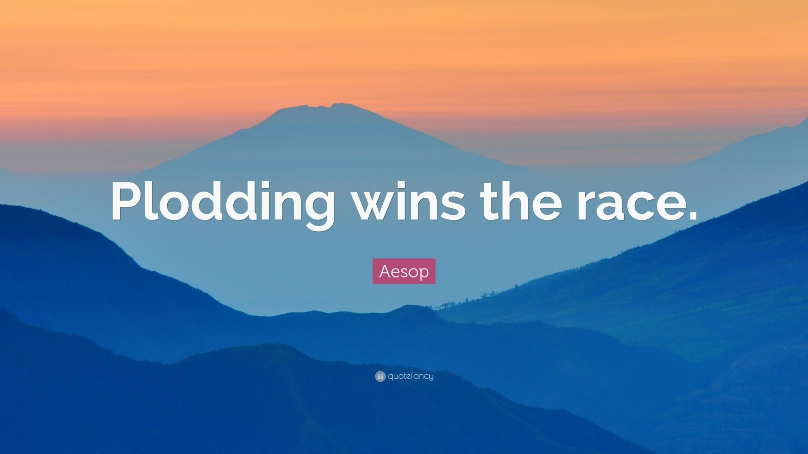 """Aesop Quote: """"Plodding wins the race."""""""