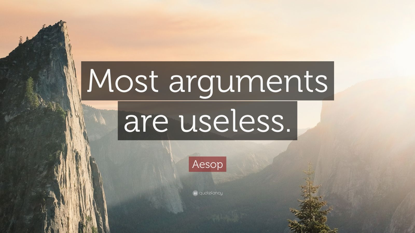 """Aesop Quote: """"Most arguments are useless."""""""