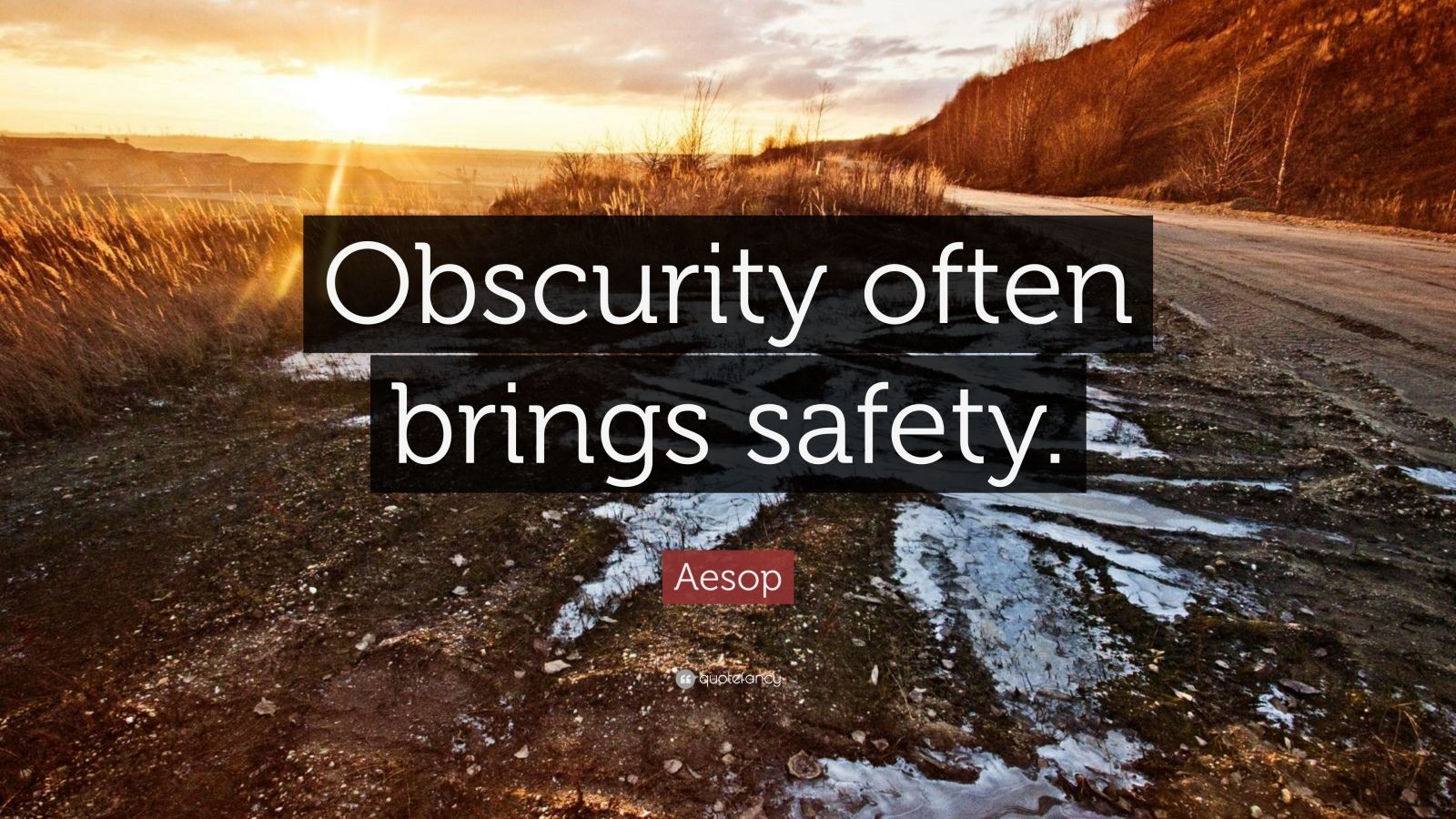 "Aesop Quote: ""Obscurity often brings safety."""