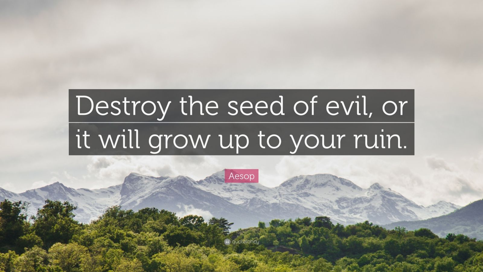 """Aesop Quote: """"Destroy the seed of evil, or it will grow up to your ruin."""""""