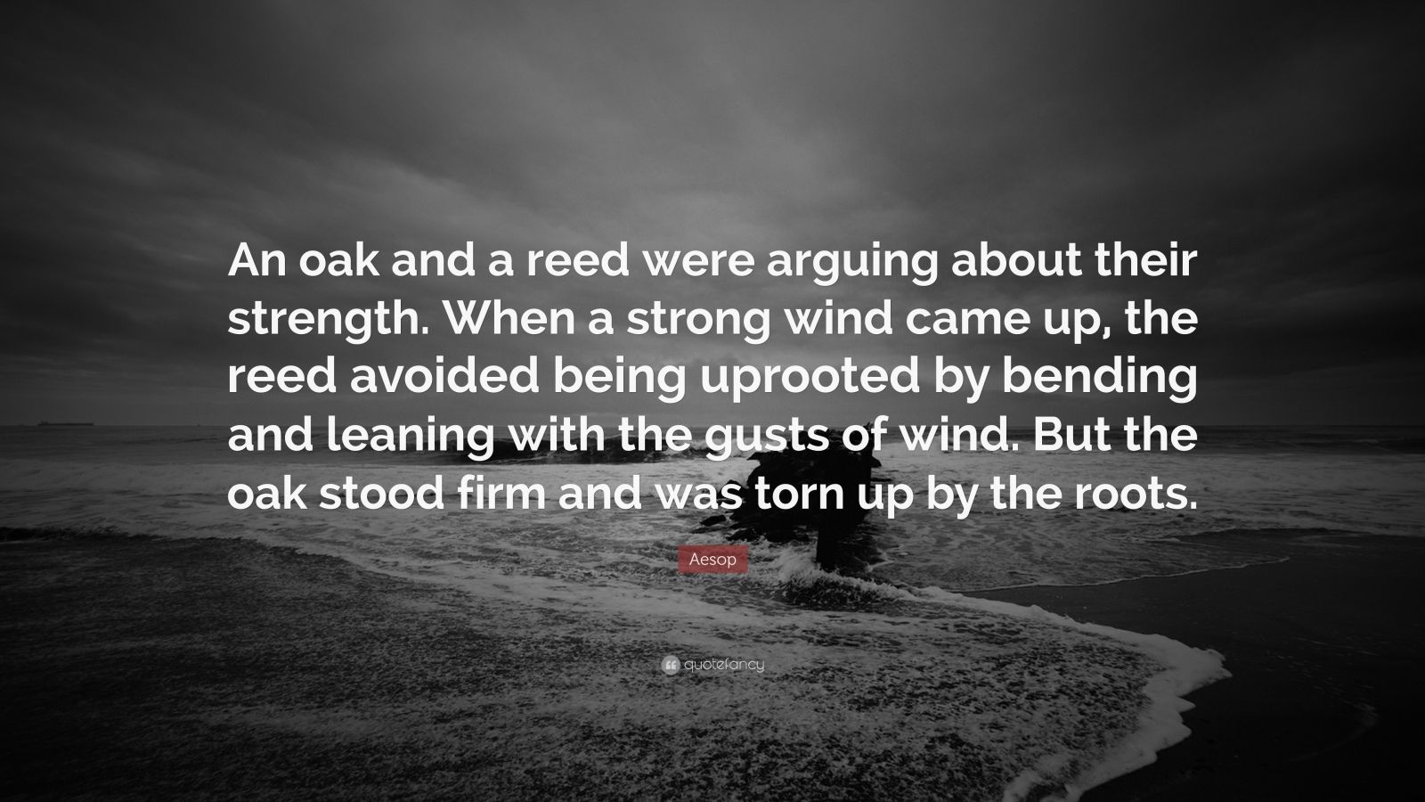 """Aesop Quote: """"An oak and a reed were arguing about their strength. When a strong wind came up, the reed avoided being uprooted by bending and leaning with the gusts of wind. But the oak stood firm and was torn up by the roots."""""""