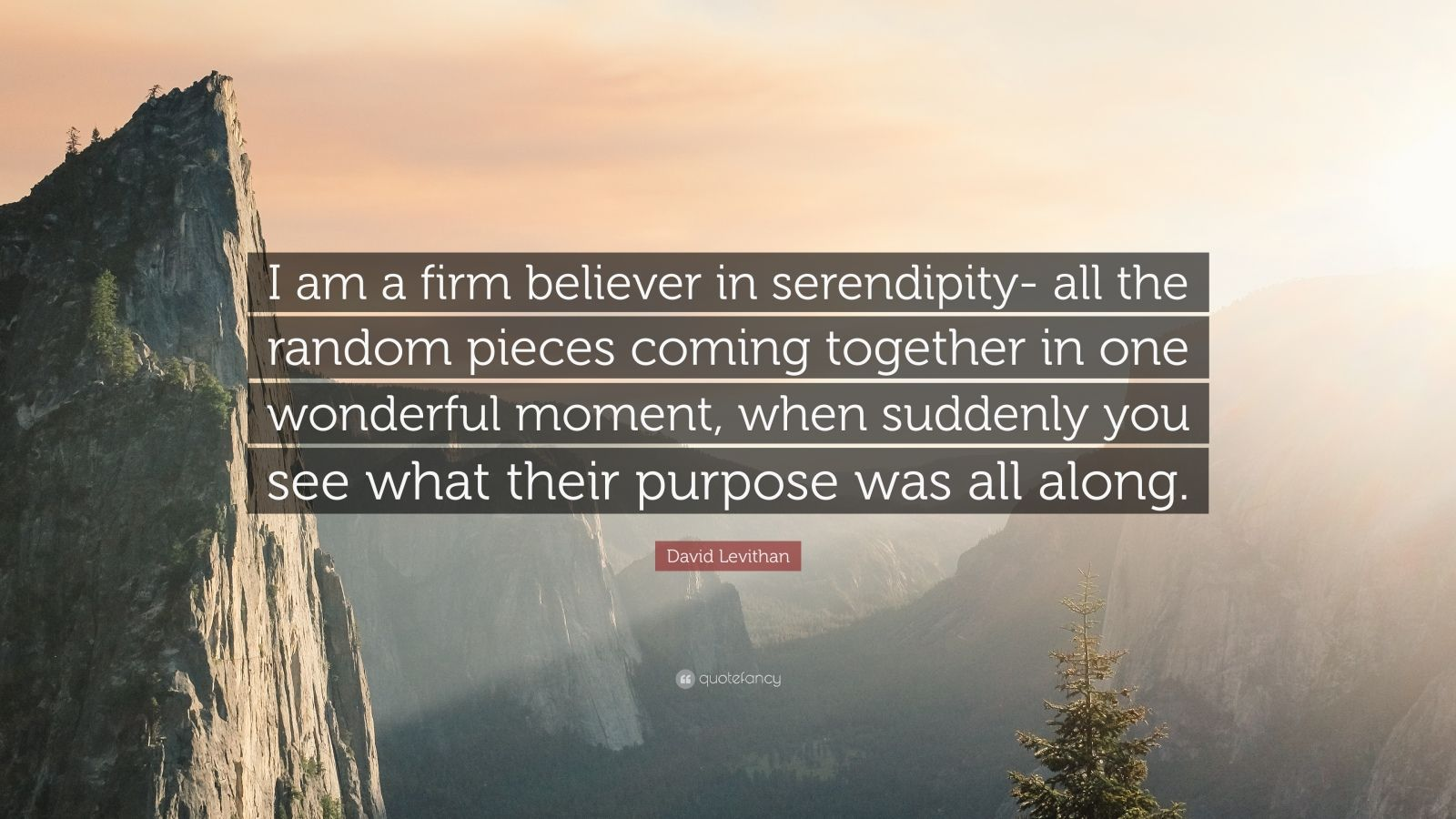 "David Levithan Quote: ""I am a firm believer in serendipity- all the random pieces coming together in one wonderful moment, when suddenly you see what their purpose was all along."""