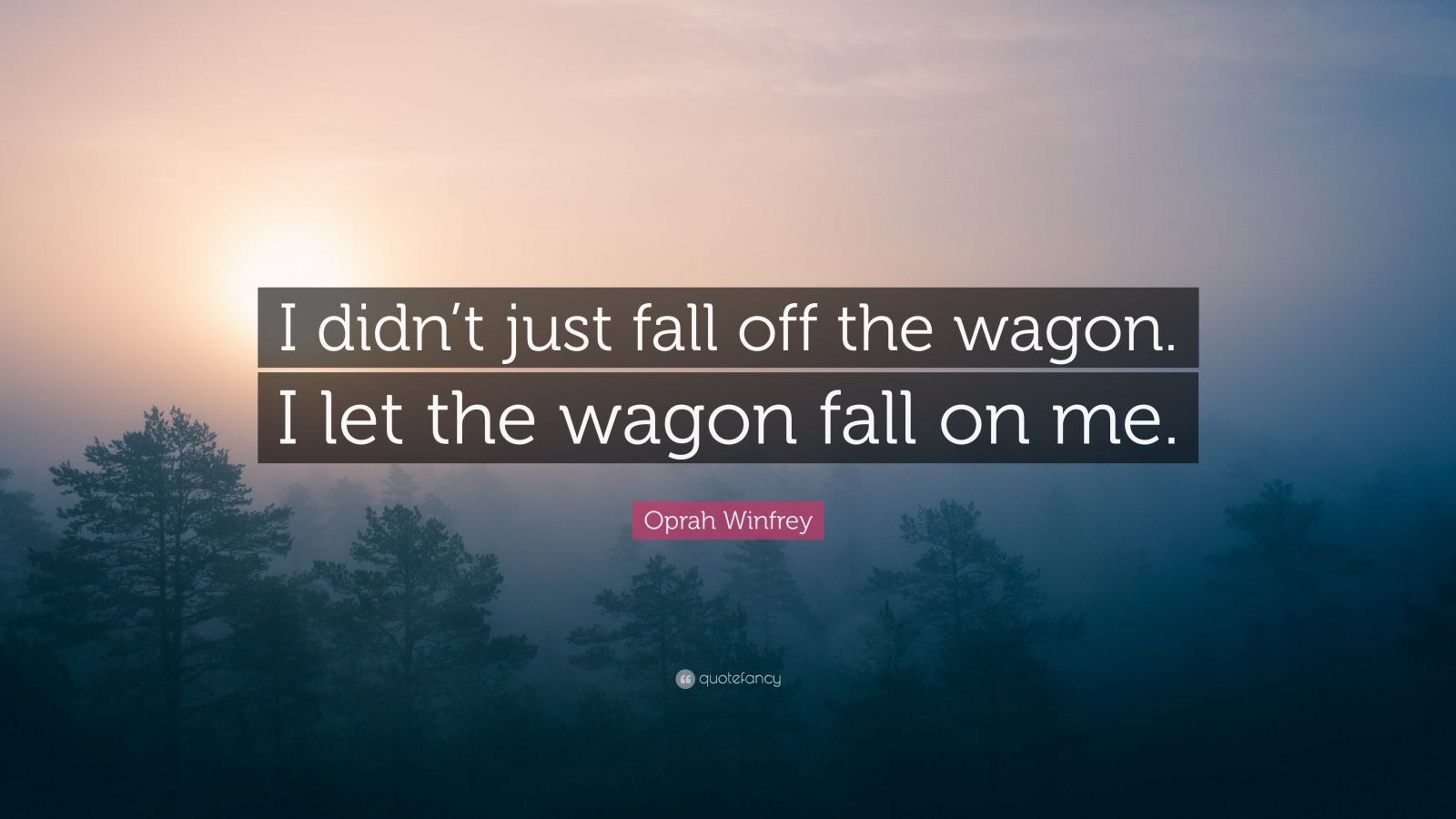 "Oprah Winfrey Quote: ""I didn't just fall off the wagon. I let the wagon fall on me."""
