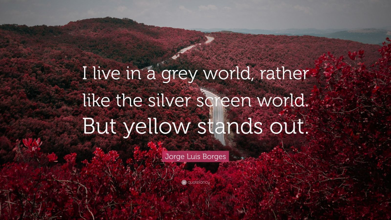 "Jorge Luis Borges Quote: ""I live in a grey world, rather like the silver screen world. But yellow stands out."""