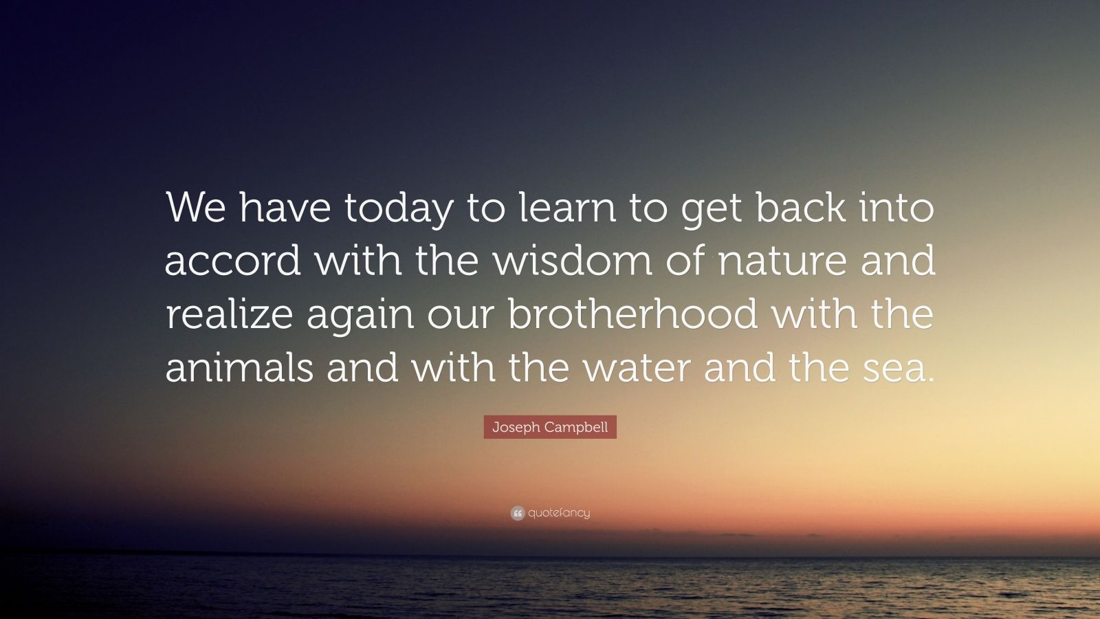 """Joseph Campbell Quote: """"We have today to learn to get back into accord with the wisdom of nature and realize again our brotherhood with the animals and with the water and the sea."""""""