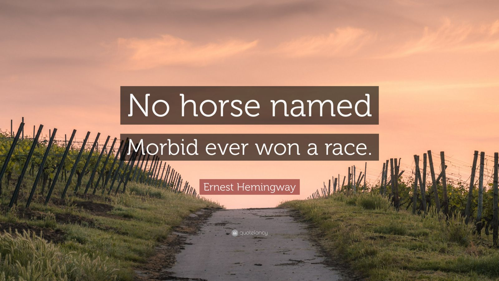 "Ernest Hemingway Quote: ""No horse named Morbid ever won a race."""
