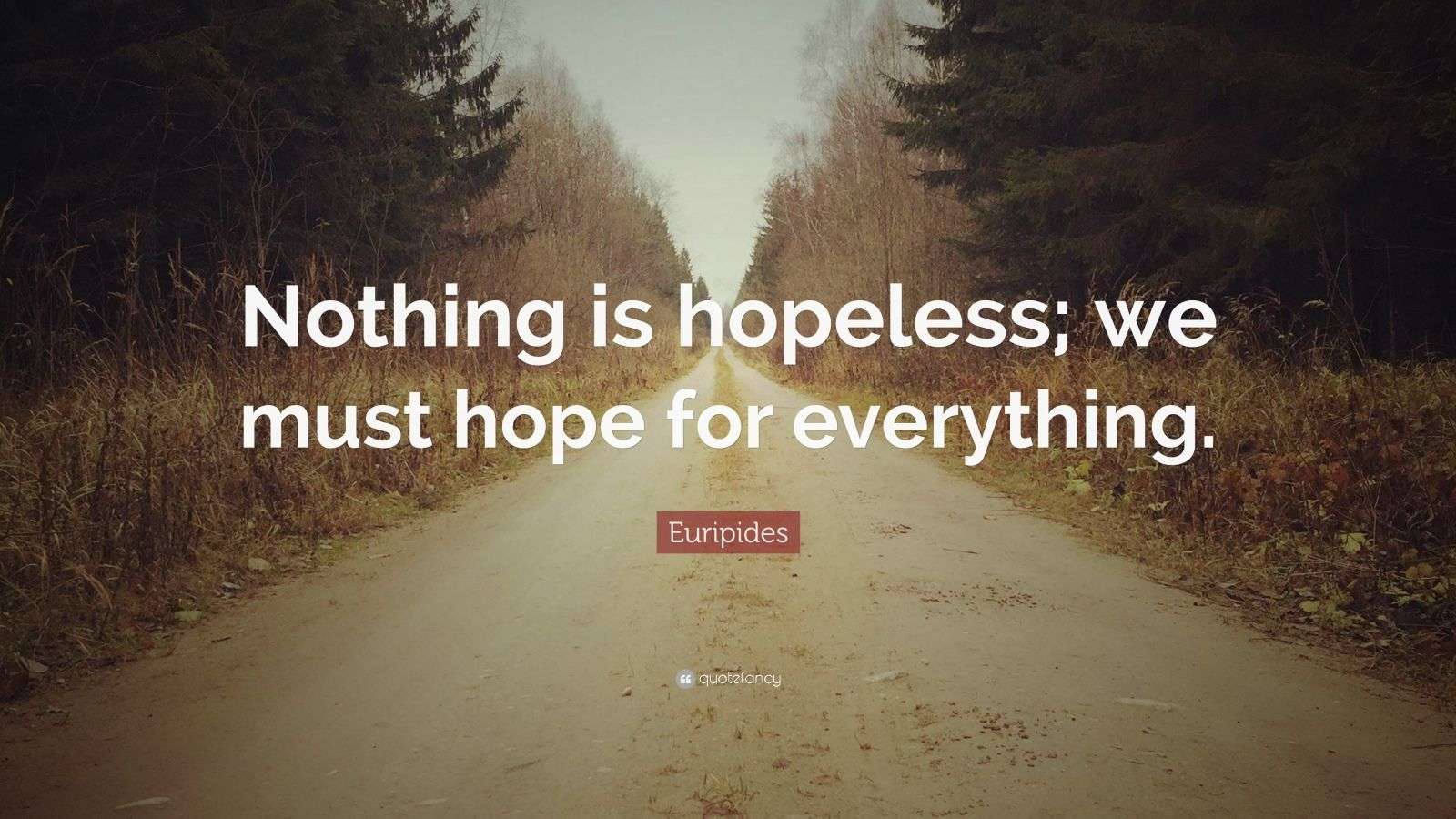 """Euripides Quote: """"Nothing is hopeless; we must hope for everything."""""""