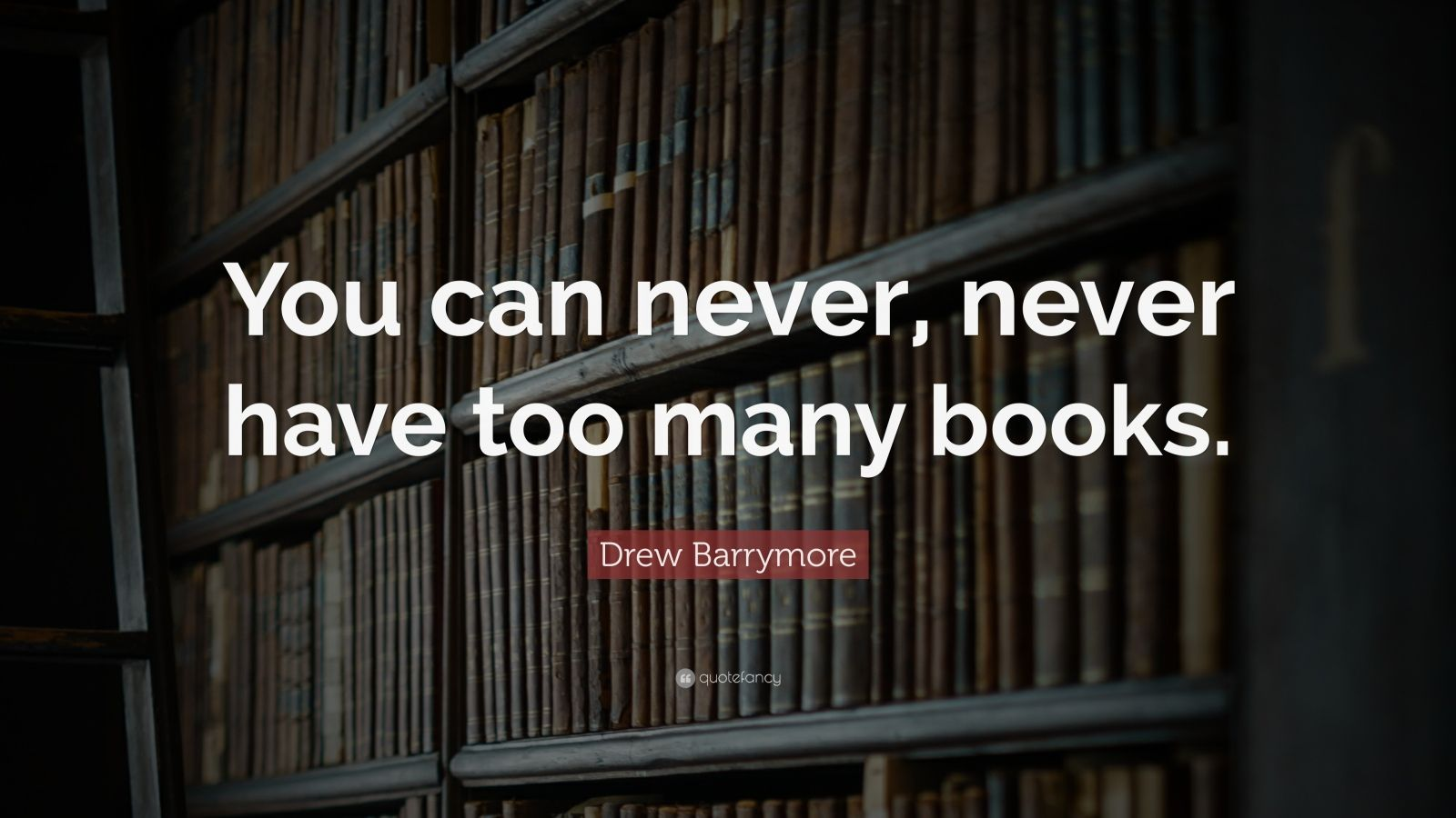"Drew Barrymore Quote: ""You can never, never have too many books."""
