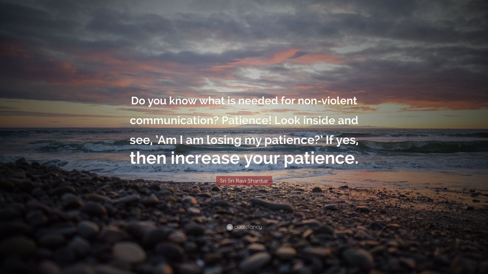 "Sri Sri Ravi Shankar Quote: ""Do you know what is needed for non-violent communication? Patience! Look inside and see, 'Am I am losing my patience?' If yes, then increase your patience."""
