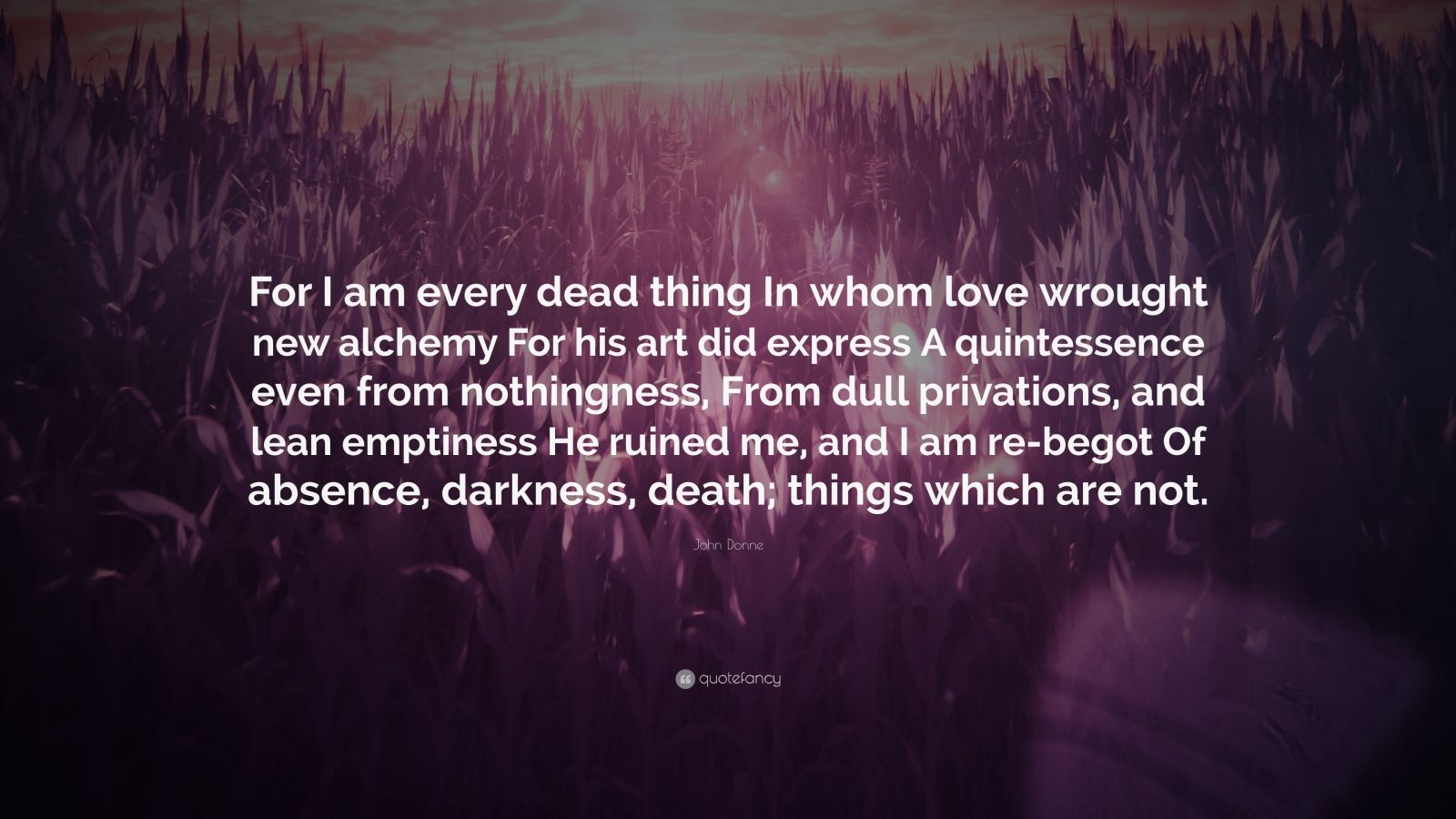 an analysis of loves alchemy by john donne Free essays → literary analysis → love's alchemy by donne → buy essay  john donne, together with ben  comapring wretch with a person who loves.