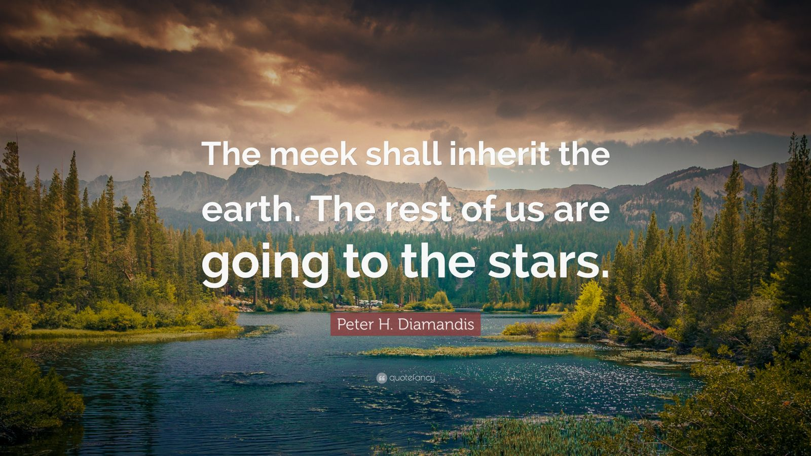 "Peter H. Diamandis Quote: ""The meek shall inherit the earth. The rest of us are going to the stars."""