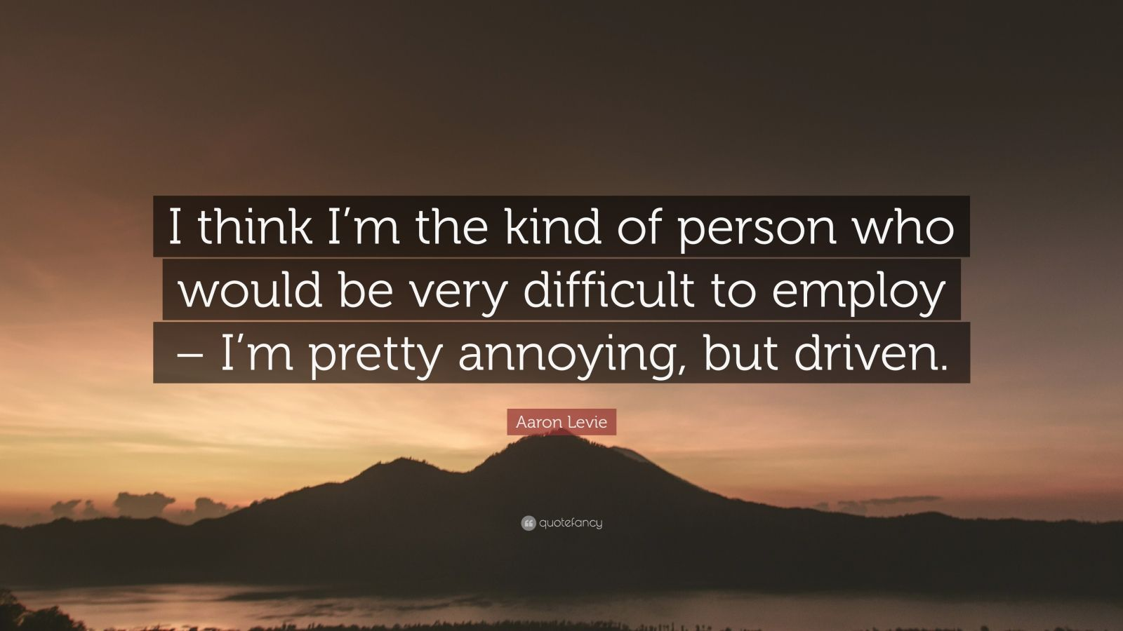 "Aaron Levie Quote: ""I think I'm the kind of person who would be very difficult to employ – I'm pretty annoying, but driven."""