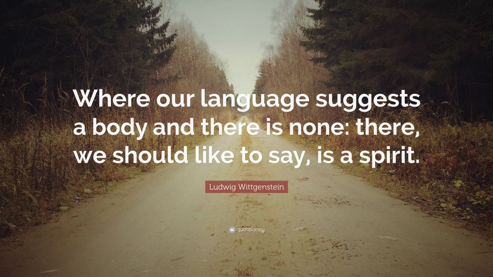 "Ludwig Wittgenstein Quote: ""Where our language suggests a body and there is none: there, we should like to say, is a spirit."""