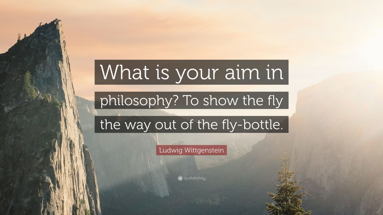 """Ludwig Wittgenstein Quote: """"What is your aim in philosophy? To show the fly the way out of the fly-bottle."""""""