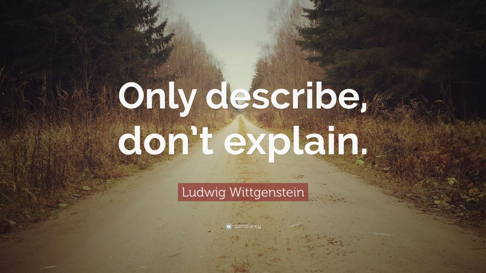 "Ludwig Wittgenstein Quote: ""Only describe, don't explain."""