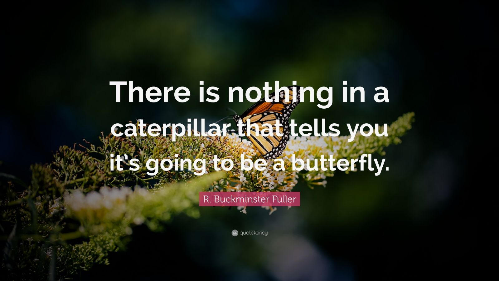 "R. Buckminster Fuller Quote: ""There is nothing in a caterpillar that tells you it's going to be a butterfly."""