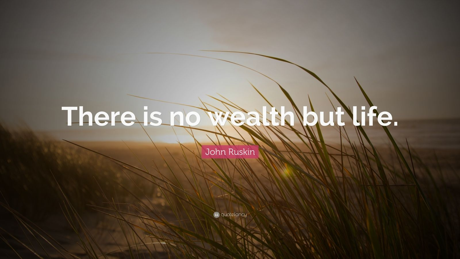 "John Ruskin Quote: ""There is no wealth but life."""