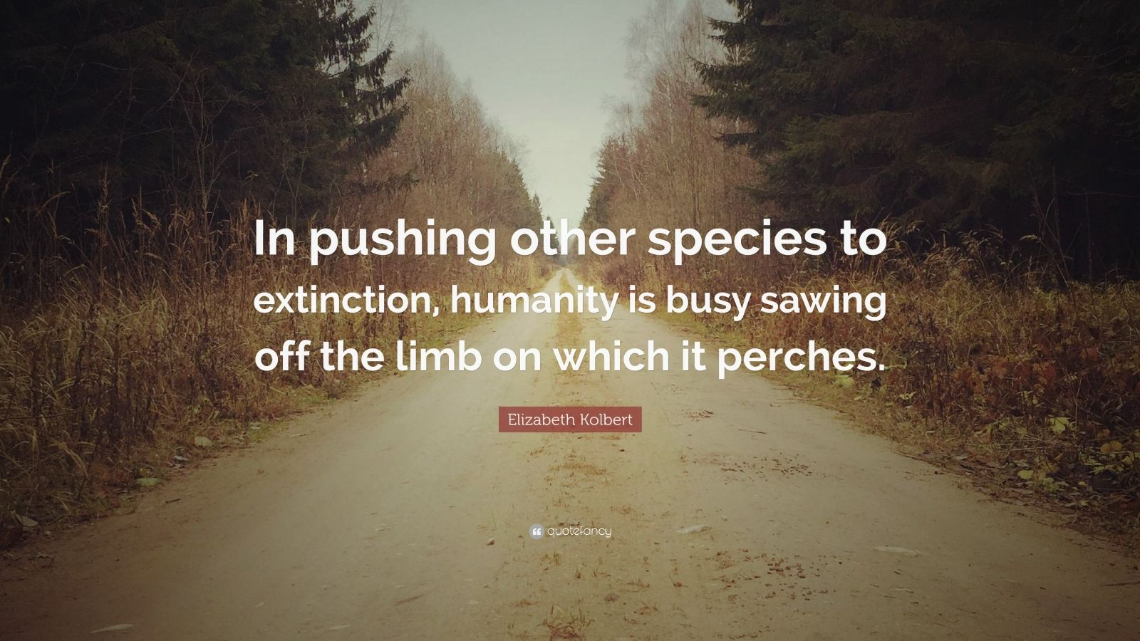 """Elizabeth Kolbert Quote: """"In Pushing Other Species To"""