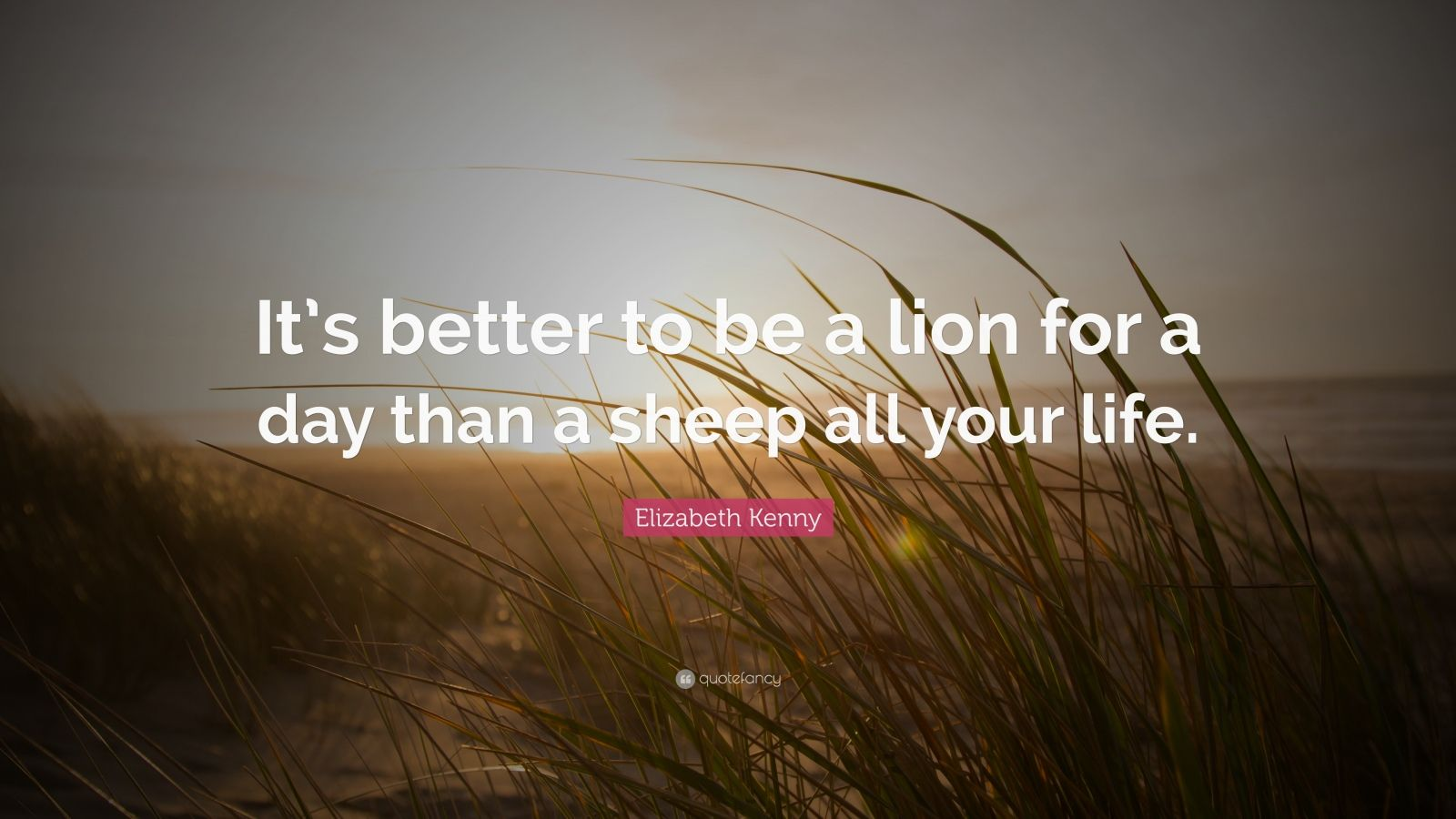 "Elizabeth Kenny Quote: ""It's better to be a lion for a day than a sheep all your life."""