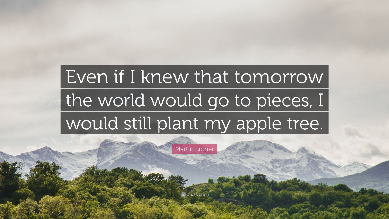 "Martin Luther Quote: ""Even if I knew that tomorrow the world would go to pieces, I would still plant my apple tree."""