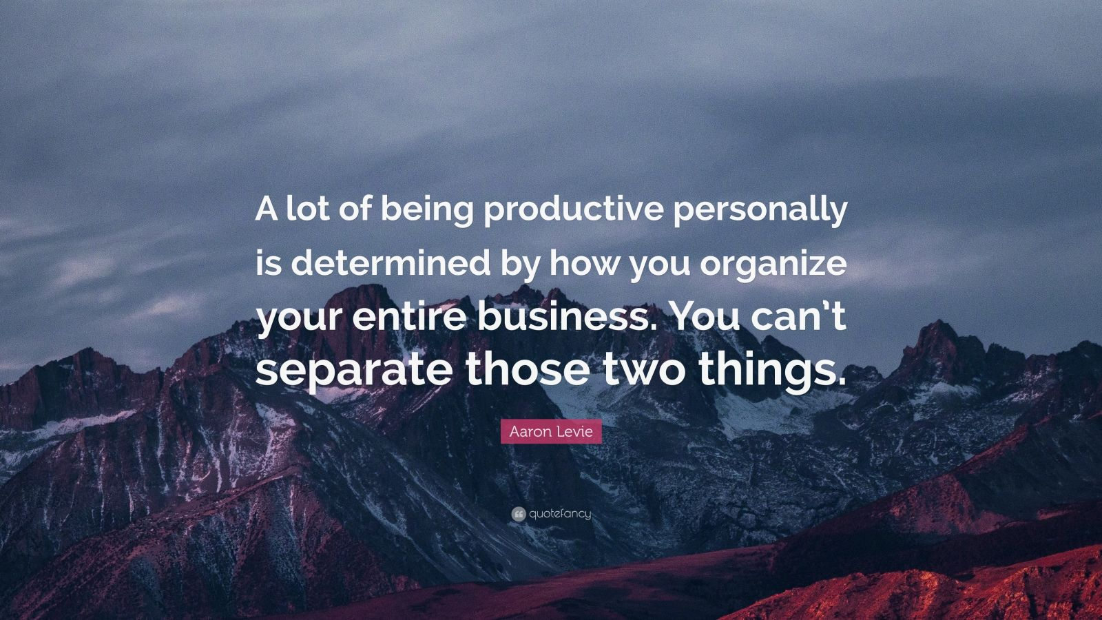 "Aaron Levie Quote: ""A lot of being productive personally is determined by how you organize your entire business. You can't separate those two things."""