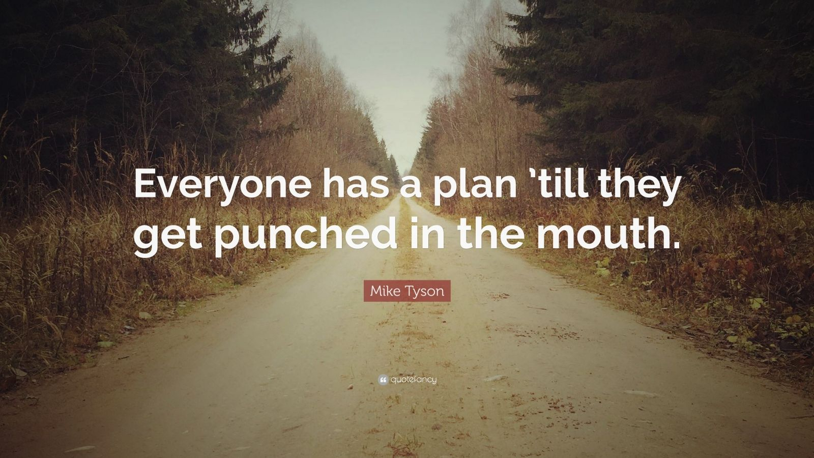 "Mike Tyson Quote: ""Everyone has a plan 'till they get punched in the mouth."""
