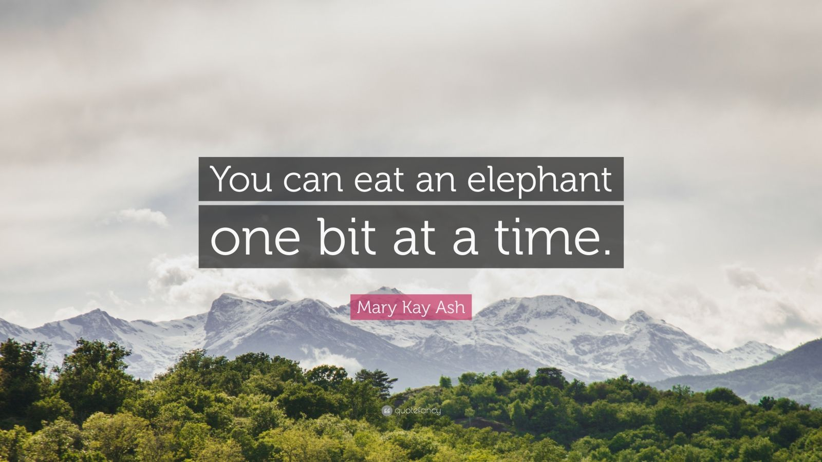 "Mary Kay Ash Quote: ""You can eat an elephant one bit at a time."""