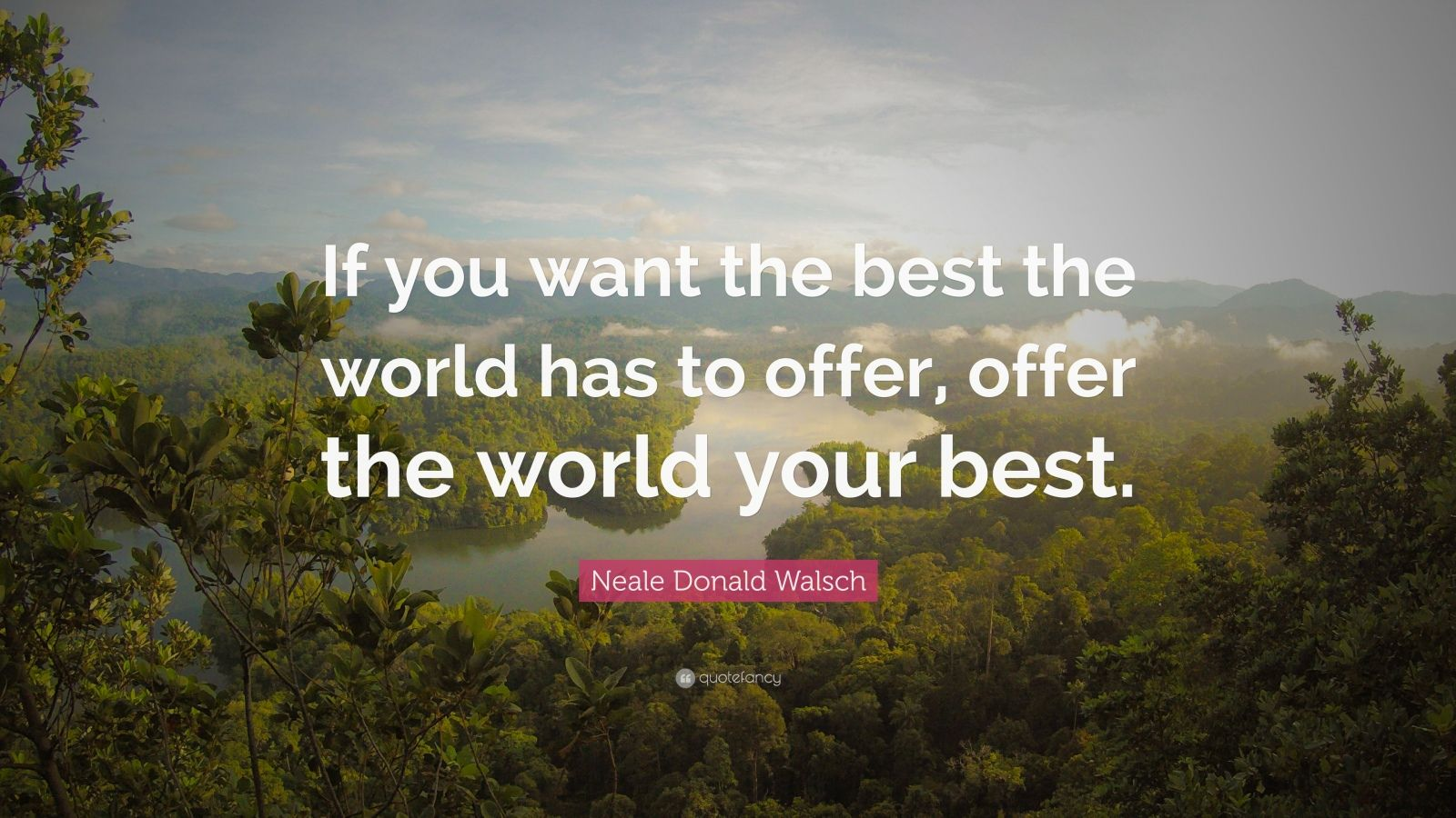 """Neale Donald Walsch Quote: """"If you want the best the world has to offer, offer the world your best."""""""