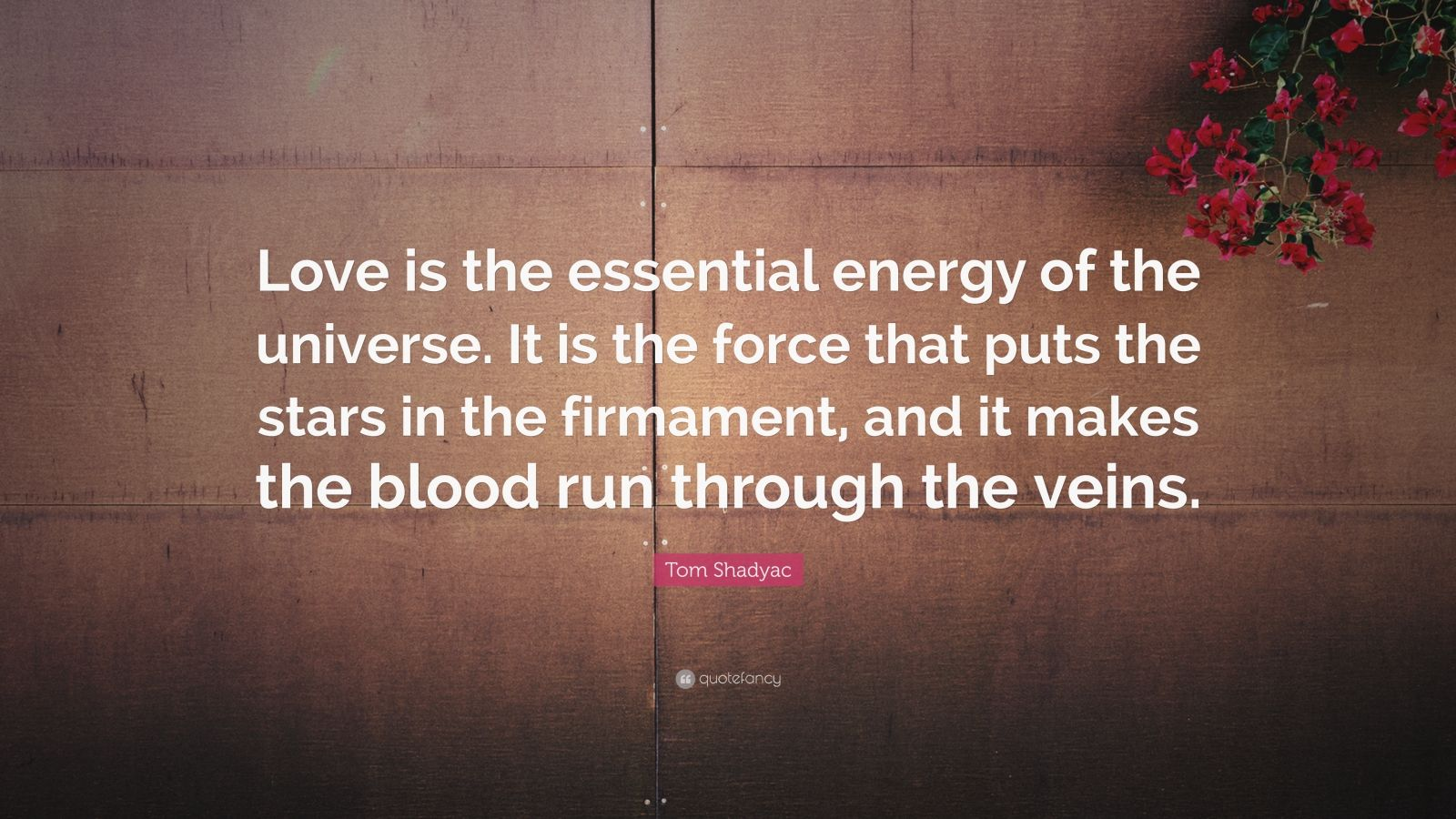 """Tom Shadyac Quote: """"Love is the essential energy of the universe. It is the force that puts the stars in the firmament, and it makes the blood run through the veins."""""""