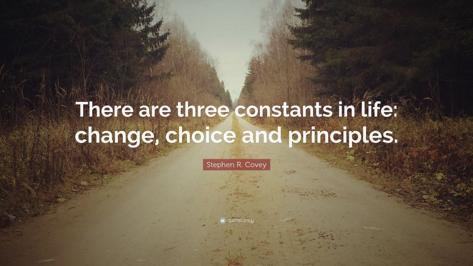"Stephen R. Covey Quote: ""There are three constants in life: change, choice and principles."""