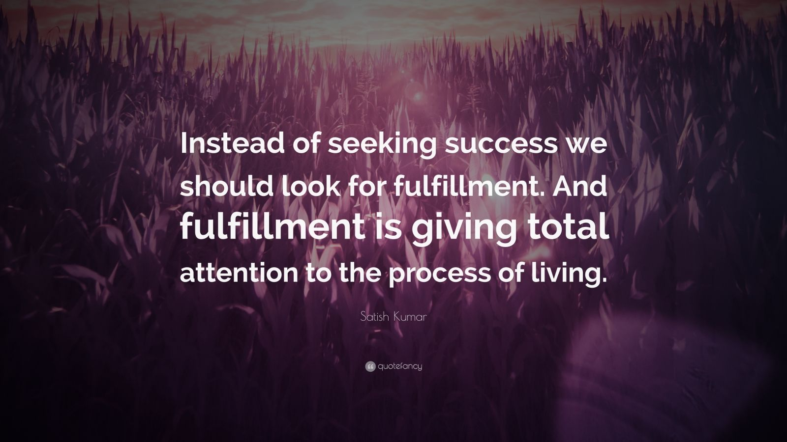 """Satish Kumar Quote: """"Instead of seeking success we should look for fulfillment. And fulfillment is giving total attention to the process of living."""""""