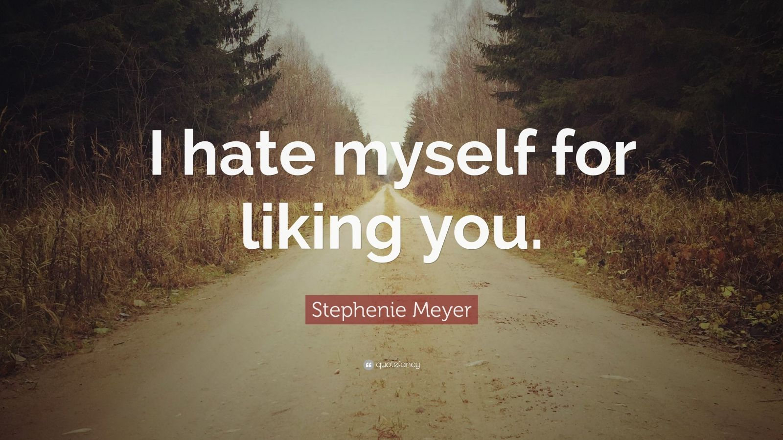 """Stephenie Meyer Quote: """"I hate myself for liking you."""""""