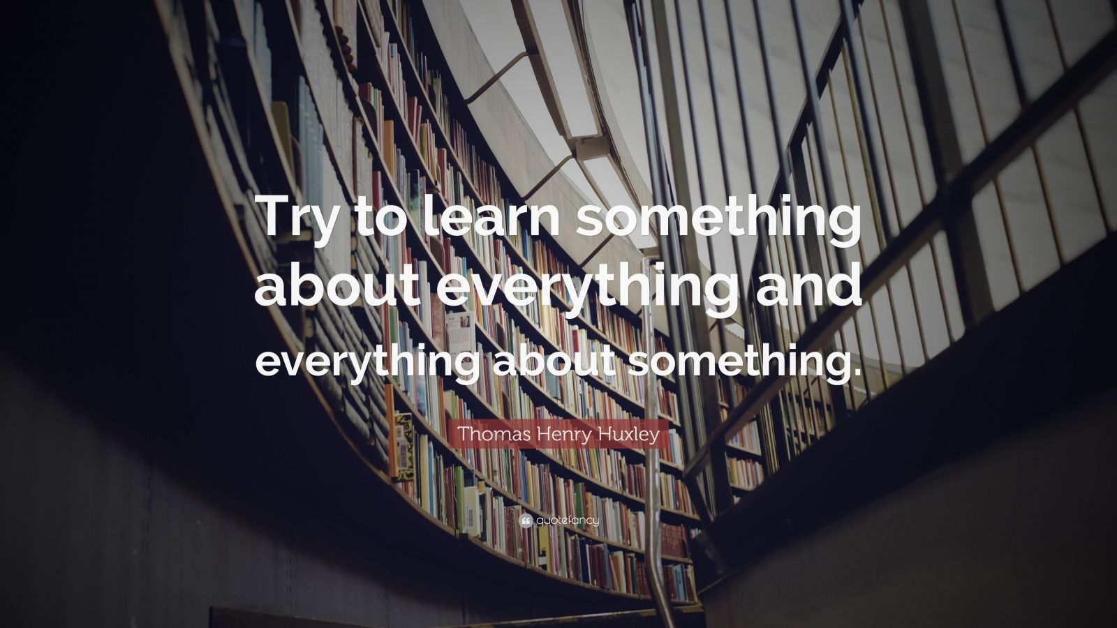 Learning Something from Everything  |Learn Something Everything