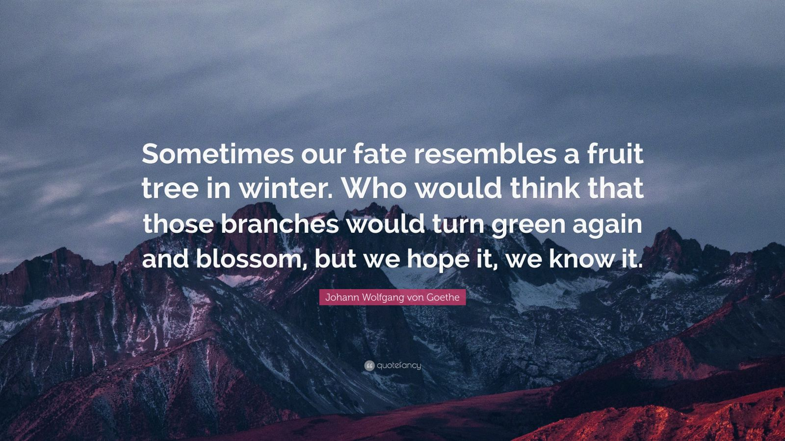 """Johann Wolfgang von Goethe Quote: """"Sometimes our fate resembles a fruit tree in winter. Who would think that those branches would turn green again and blossom, but we hope it, we know it."""""""