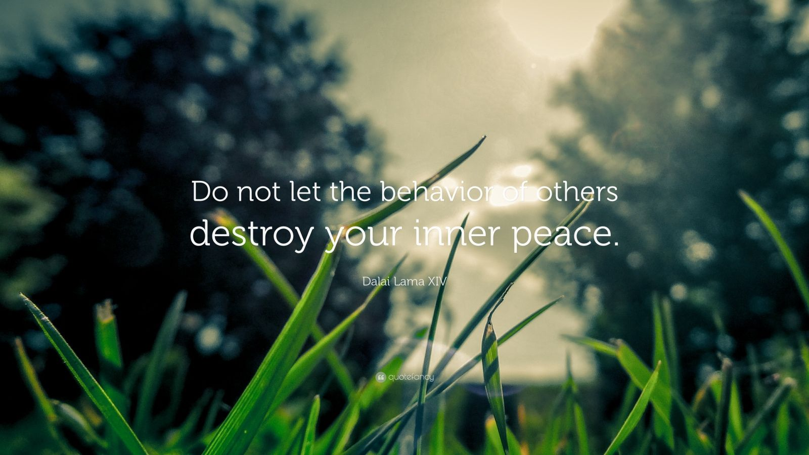 "Dalai Lama XIV Quote: ""Do not let the behavior of others destroy your inner peace."""