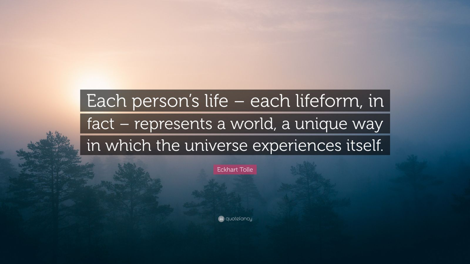 """Eckhart Tolle Quote: """"Each person's life – each lifeform, in fact – represents a world, a unique way in which the universe experiences itself."""""""
