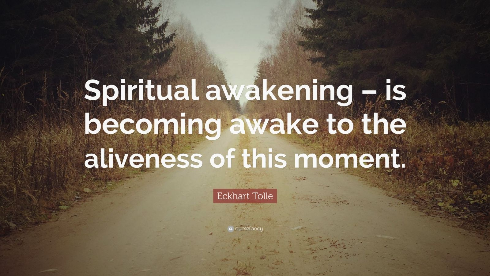 """Eckhart Tolle Quote: """"Spiritual awakening – is becoming awake to the aliveness of this moment."""""""