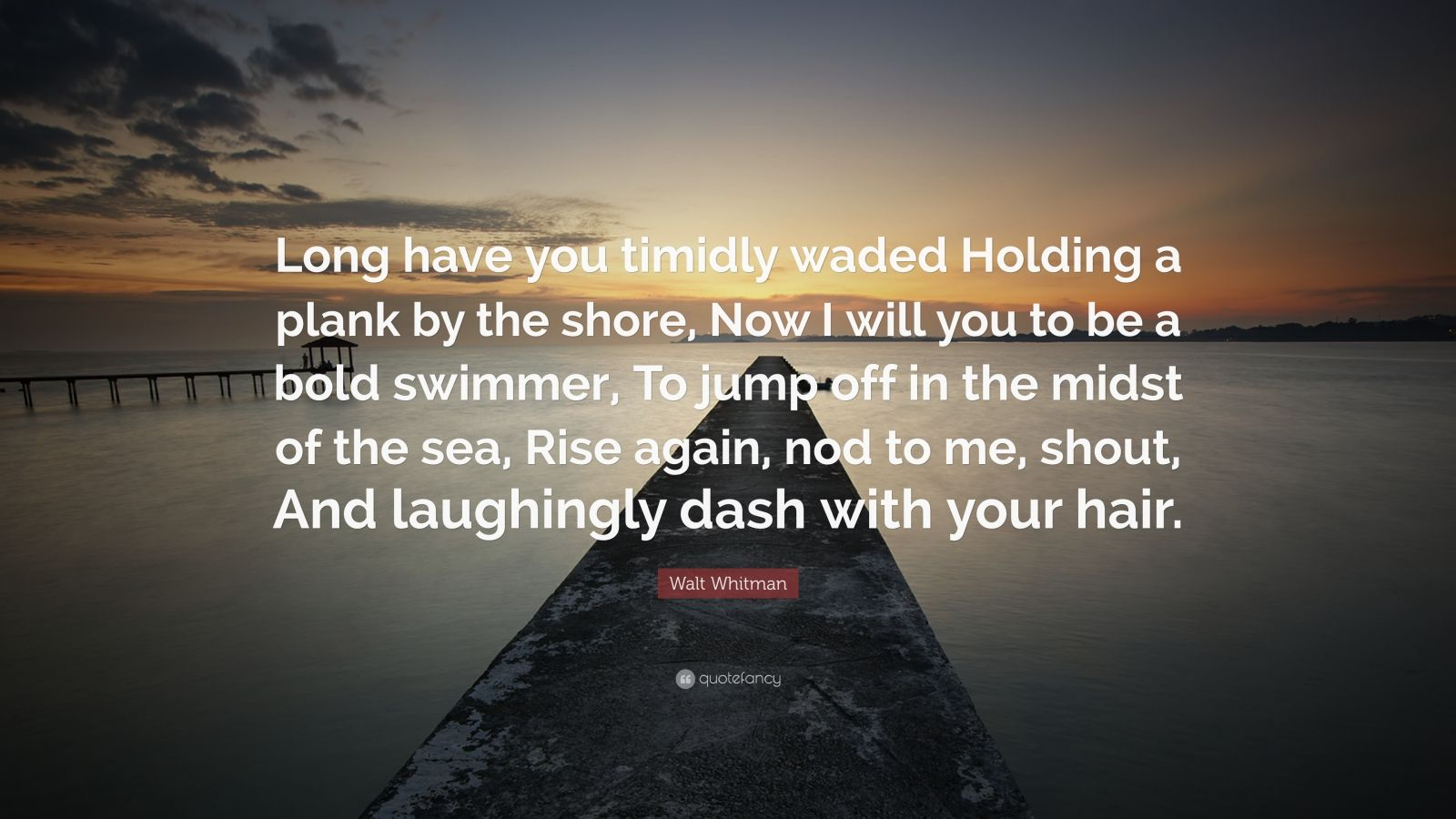 """Walt Whitman Quote: """"Long have you timidly waded Holding a plank by the shore, Now I will you to be a bold swimmer, To jump off in the midst of the sea, Rise again, nod to me, shout, And laughingly dash with your hair."""""""