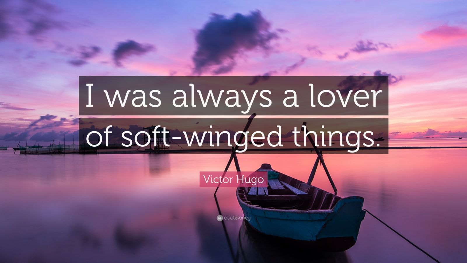 "Victor Hugo Quote: ""I was always a lover of soft-winged things."""