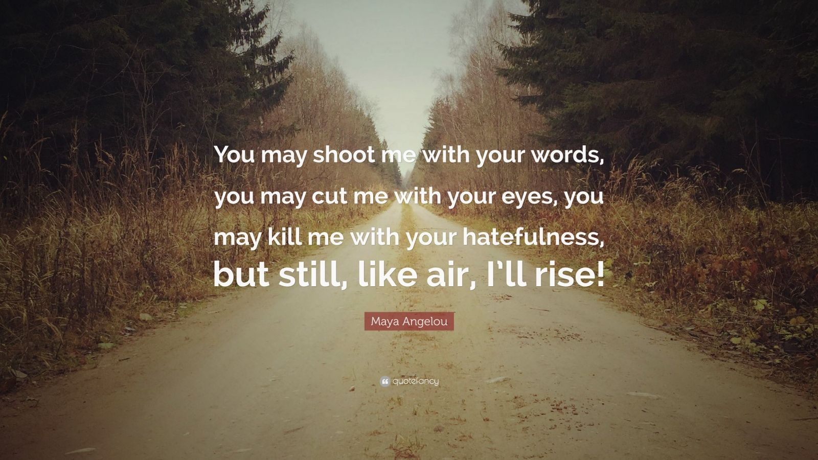 "Maya Angelou Quote: ""You may shoot me with your words, you may cut me with your eyes, you may kill me with your hatefulness, but still, like air, I'll rise!"""