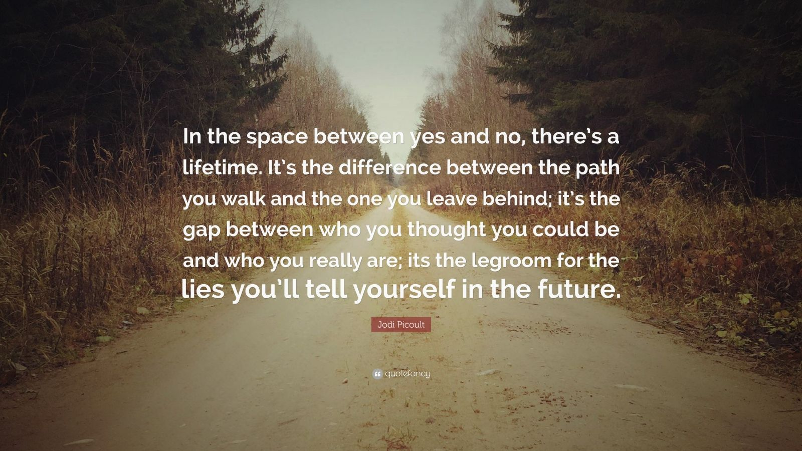 "Jodi Picoult Quote: ""In the space between yes and no, there's a lifetime. It's the difference between the path you walk and the one you leave behind; it's the gap between who you thought you could be and who you really are; its the legroom for the lies you'll tell yourself in the future."""